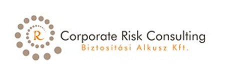 Corporate Risk Consulting
